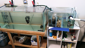 3ft tank +sump+canister+marinepure media Adelaide CBD Adelaide City Preview