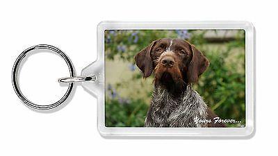 Tedesco Wirehair Pointer 'tua per sempre' Portachiavi Con Foto Animal,AD-GWP1yK - Tedesco Wirehair Pointer