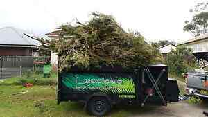 Lawn Mowing Removal of Green Waste & General Rubbish Tree & Stump Bellambi Wollongong Area Preview