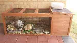 Rabbit Cage with Accessories Safety Bay Rockingham Area Preview