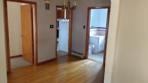 Large 3 bedroom  close to downtown & the George Dumont