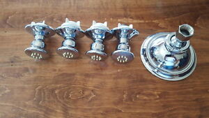 Moen Shower Head and 4 Body Jets