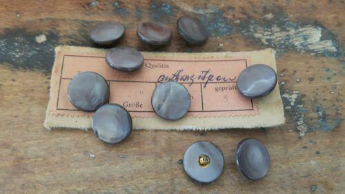 ♥Nr.P3 Zauberhafte alte  Perlmuttknöpfe weiß 10 Stück DM 15,5 mm ♥