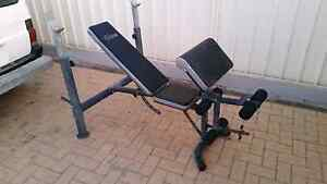 CELCIUS Adjustable Bench Press with Leg Curl Ext Plus Extras $75 Huntingdale Gosnells Area Preview
