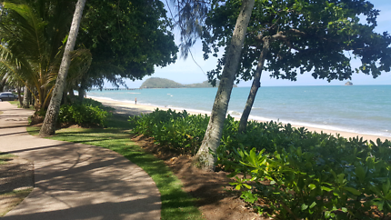 Palm Cove Cafe