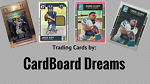 CardBoard Dreams