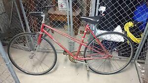 Vintage Ladies Bicycle Woollahra Eastern Suburbs Preview