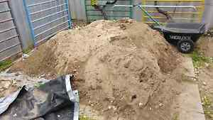 Free sand, need it gone soon! Port Kennedy Rockingham Area Preview