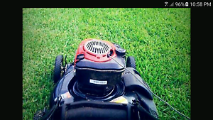 Lawn mowing Small/medium yards  $35 first mow $30 Sandstone Point Caboolture Area Preview