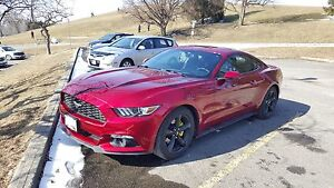 2015 Ford Mustang Eco-Boost Premium Package