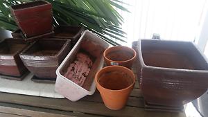 Various plant pots Toowong Brisbane North West Preview