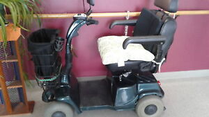 4 wheeler  for  handicapped  or not to  use  bus