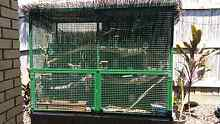 PRICE REDUCED Suspended aviary on wheels Sippy Downs Maroochydore Area Preview