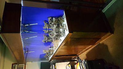 ACRYLIC SALTWATER FISH TANK 180GL.