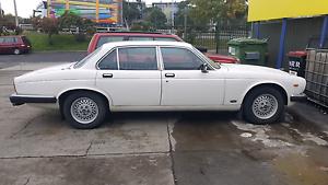 Jaguar 1984 XJ6 4.2 Port Melbourne Port Phillip Preview