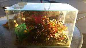 Aquarium with accessories $20. The Oaks Wollondilly Area Preview