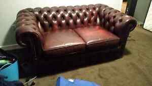 Leather 2.5 seater Moran chesterfield lounge sofa Camp Mountain Brisbane North West Preview
