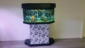 3 foot Fish tank Joondalup Joondalup Area Preview
