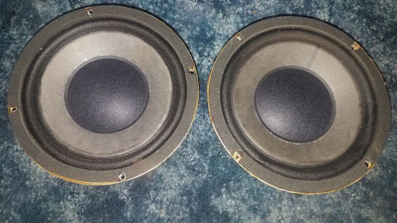"8"" Woofers with huge magnets"