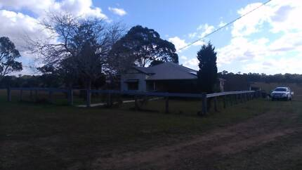 House Mate Newly renovated farm house Bolwarra Heights