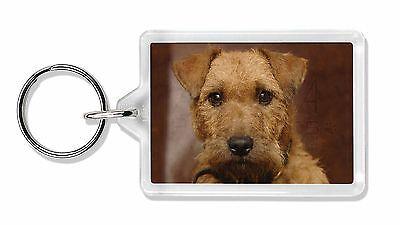 Lakeland Terrier Dog Photo Keyring Animal Gift, AD-LT2K