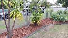 Gc's mowing and garden make overs Gumdale Brisbane South East Preview