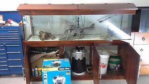 6 Foot Aquarium, Timber Cabinet and Accessories Forster Great Lakes Area Preview