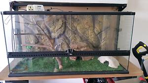 Reptile  inclosure tank. Telarah Maitland Area Preview