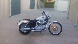 Harley Davidson XL Custom Sportster Gympie Gympie Area Preview