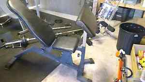 Adjustable weights bench with preacher curl and legs Frenchs Forest Warringah Area Preview