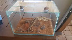 Small scorpion/spider/reptile enclosure..can make any size Beechboro Swan Area Preview