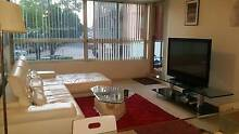 BEAUTIFUL FLAT LOOKING FOR 4 PEOPLE/COUPLES/FEMALES Homebush Strathfield Area Preview