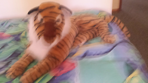 Tiger soft toy Geilston Bay Clarence Area Preview