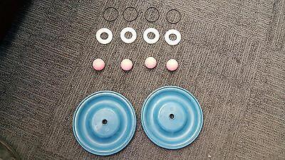 Plating International Air Diaphragm Kit For A 2 Air Diaphragm Pump