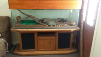 Terrarium/Aquarium and cabinet High Wycombe Kalamunda Area Preview