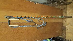 Carrot stick and rope halter