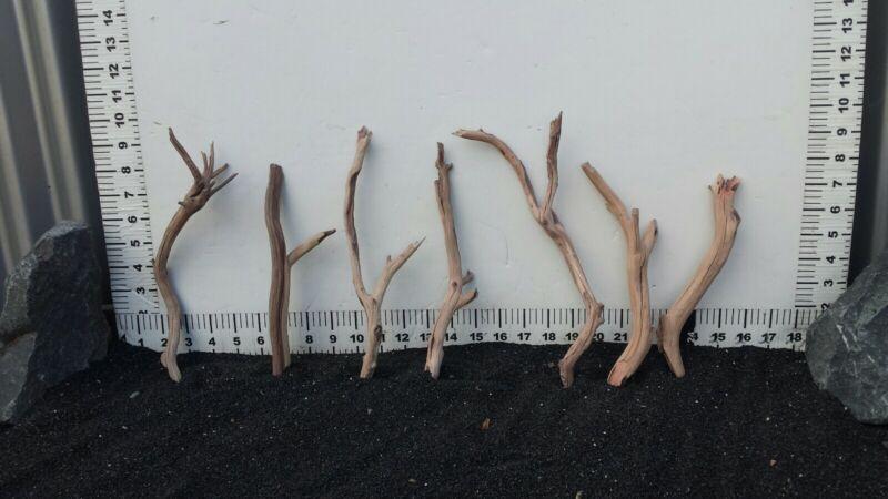 Aquarium Driftwood Branch Aquarium / Reptile Decor from Manzanita Direct 0414-1