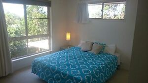 Two Large Rooms Close to Everything Buderim Maroochydore Area Preview
