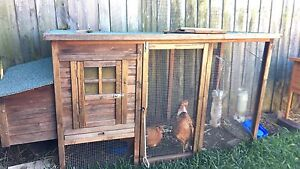 SPECIAL DEAL!! Chicken house plus 2 hens Greenacre Bankstown Area Preview