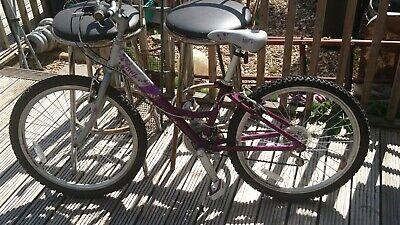 """Rayleigh 24"""" Girls Bike"""