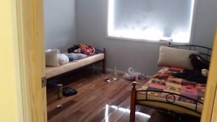 room for rent in parramatta