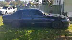 1995 holden commodore acclaim Windale Lake Macquarie Area Preview