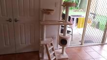 Cat Tree For Sale Ashmore Gold Coast City Preview