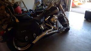 2009 Harley Fatboy softail