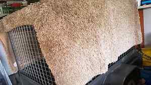 Shaggy light brown rug Hamilton Newcastle Area Preview