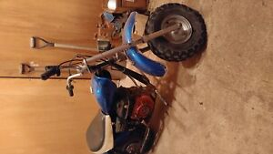 2006 Baja Mini Bike