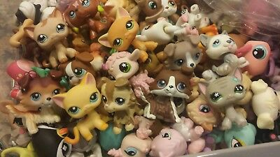 LPS 💕Littlest Pet Shop Lot 10 Pcs (6 Pets +1 Dog Or Cat + 3 accessories)🎁 Box