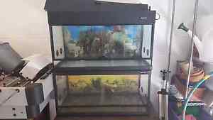 2 x 3ft Reptile One Enclosures $300 each Kelso Townsville Surrounds Preview