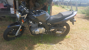 FOR SALE SUZUKI GS 500 Broke Singleton Area Preview