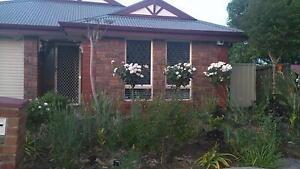 35 Farnborough Street, Oakden Oakden Port Adelaide Area Preview